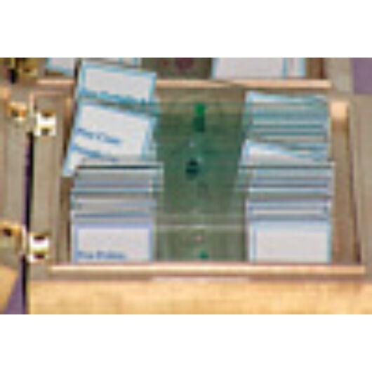 Mikroszkóp preparátumok (25db, Anatómia: gerincesek) (#B) Prep25an